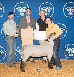 Johnson Club Lambs - Gotebo, OK : Winners